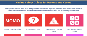 Online Safety Guides for Parents