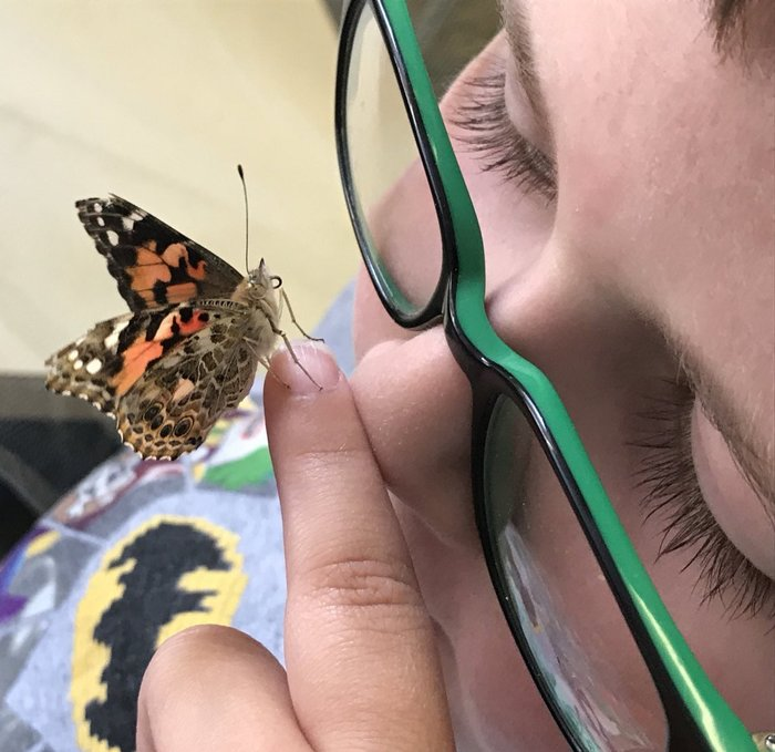 students and butterflies
